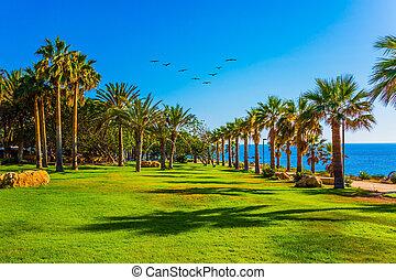 Island in the Mediterranean