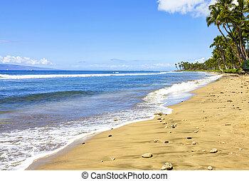 Island Maui gold sandy beach with palm trees. Hawaii.