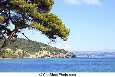 island of palmaria