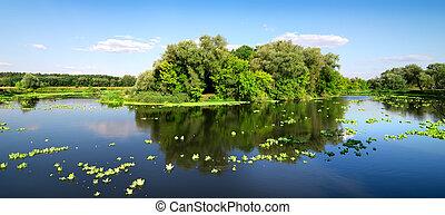 Island on river
