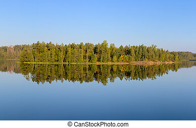 island on the forest lake