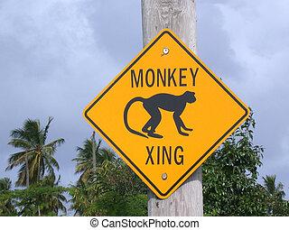 Island Road Sign