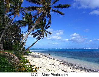 Island Walk - Girl walking under massive palm trees