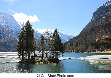 Island with many firs on the alpine lake called Lago del Predil