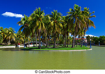 Island With Palm Trees