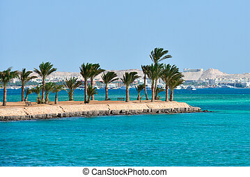 Island with palm trees on the Red Sea in Egypt