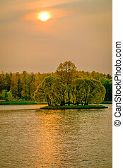 Island with trees in the lake