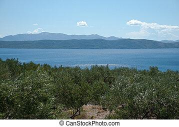 Islands on Adriatic Sea in Dalmatia, Croatia