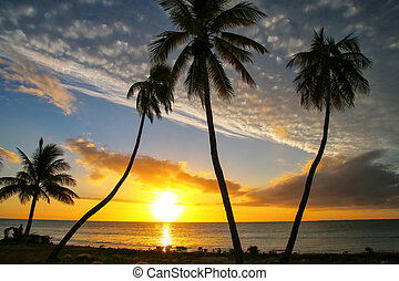 islas, isla, encima, ocaso, lealtad, laguna, caledonia, ...
