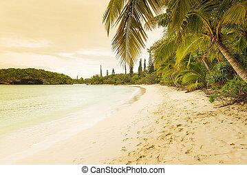 Isle Of Pines