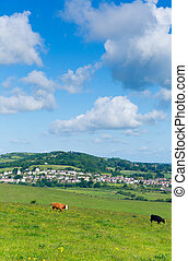 Isle of Wight countryside Brading - Brading Isle of Wight...