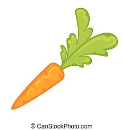 isolé, carotte, fond, légume, blanc, racine