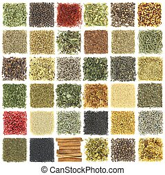 isolé, collection, grand, herbes, blanc, épices