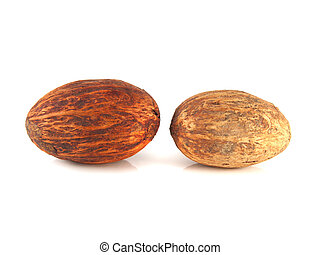 isolé, deux, arrière-plan., nuts., muscade, blanc
