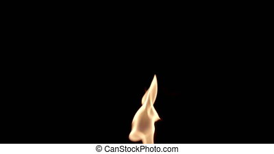isolé, flammes, brûler, arrière-plan noir