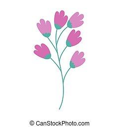 isolé, fleurs, branche, icône