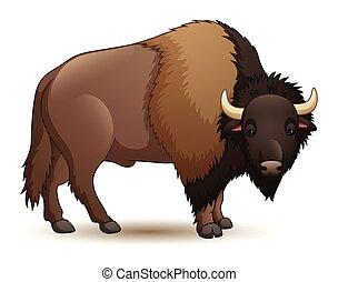 isolé, fond blanc, illustration, bison