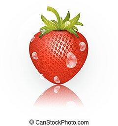 isolé, illustration, fraise, vecteur, fond, blanc