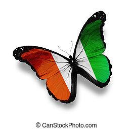 isolé, ivoire, drapeau, cote, blanc, papillon