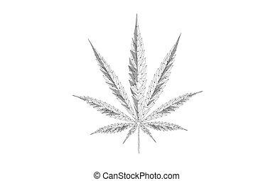 isolé, leaf., douleur, marijuana, poly, 3d, médecine, monde médical, vecteur, légal, mauvaise herbe, legalize, état, traitement, concept., prescription, illustration, cannabis, bas, objet, traditionnel, symbole.