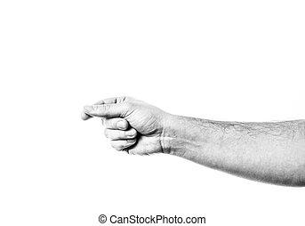 isolé, mâle, tenue, virtuel, card., blanc, main, arrière-plan.