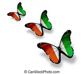 isolé, papillons, trois, ivoire, drapeau, cote, blanc