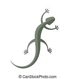 isolé, vecteur, arrière-plan vert, blanc, gecko