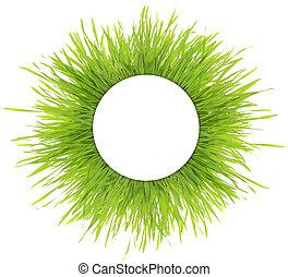 isolé, vert, vide, blanc, herbe, bannière, rond