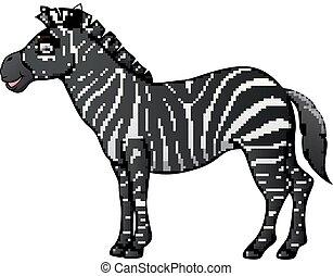 isolé, zebra, fond, blanc, dessin animé, heureux