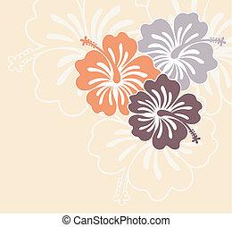 isola, fiori