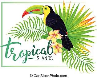 isola, foglie, tropicale, tucano, fiori, composizione