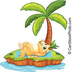 isola, gatto, rilassare