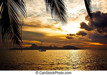 isola moorea, sopra, tramonto, tahiti, visto