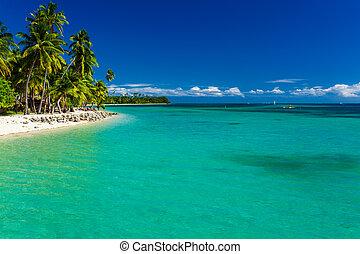 isola tropicale, acqua, pulito, spiaggia, figi, sabbioso