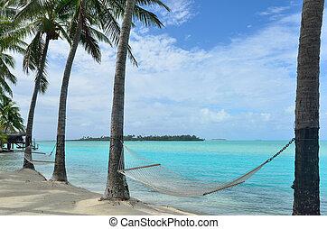 isola tropicale, amaca
