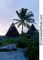 isola tropicale, bungalow, spiaggia, polinesiano