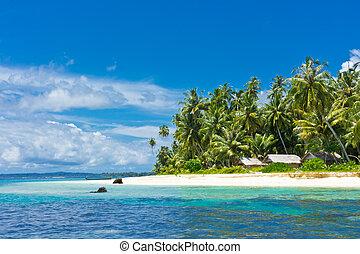 isola tropicale, paesaggio