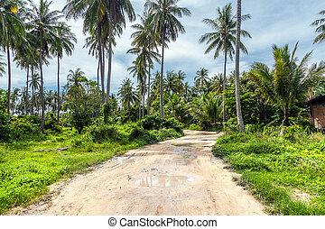 isola tropicale, racha, tailandia