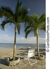 isola tropicale, sedia, spiaggia