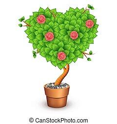 isolado, árvore, com, flores, em, argila, pot., forma, de, coração