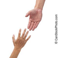 isolado, ajudando, fundo, mãos, branca
