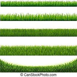 isolado, cobrança, experiência verde, branca, capim, borda