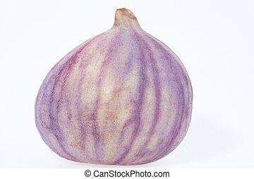 isolado, fruta, figo, fundo, fresco, branca