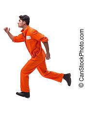 isolado, prisioneiro, fundo, beca laranja, branca