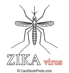 isolado, símbolo., vírus, vetorial, illustration.thin, linha, icon., zika