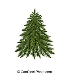 isolado, white., árvore abeto