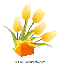 isolamento, bianco, regalo, tulips