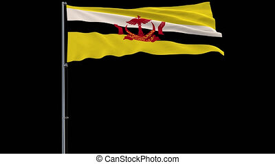 Isolate flag of Brunei, 4k prores 4444 footage with alpha transparency