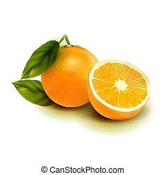 isolate., foglie, isolato, frutta, realistico, vettore, white., arancia
