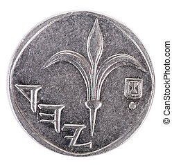 Isolated 1 Shekel - Heads Frontal - The obverse side of an ...